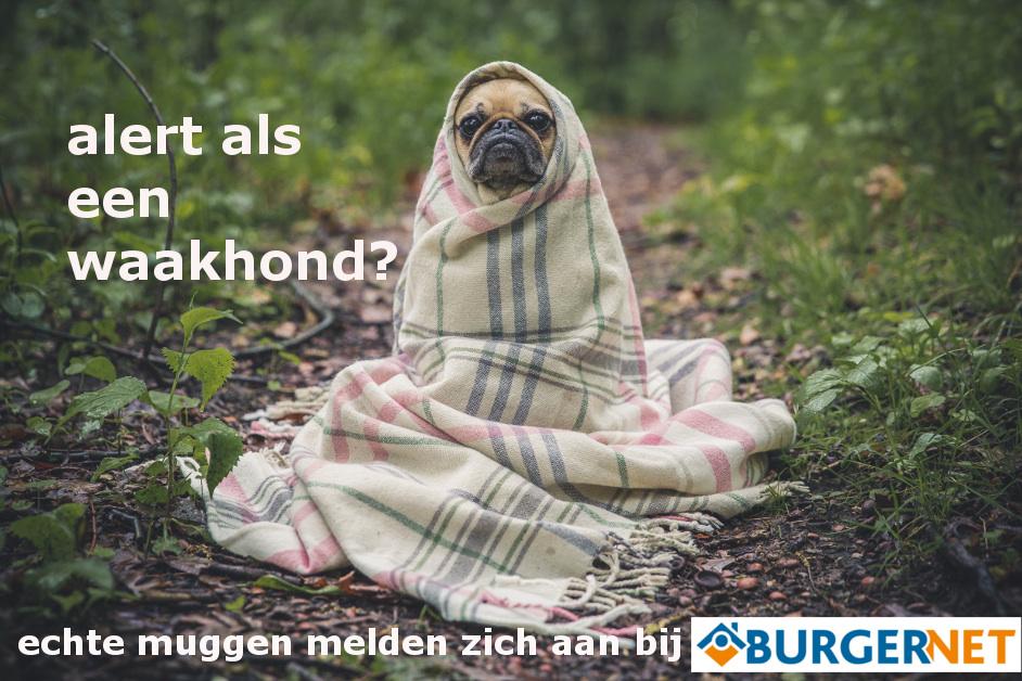 Waakhond uiting Burgernet 2016